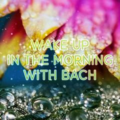 Wake Up in the Morning with Bach, Beethoven – Classics Morning Music, Early Morning Songs,Chamber Music to Vital Energy, Be Positive and Happy
