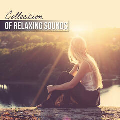 Collection of Relaxing Sounds and Meditation Songs - Music Therapy, Healing Nature Sounds, New Age for Relaxation, Yoga, Therapeutic Massage