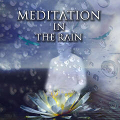 Meditation in the Rain - Inspiring Sounds for Meditation, Healing Rain, Relaxation & Meditation for Every Day, Soothing Nature Sounds for Aromatherapy, Inner Peace