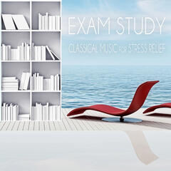 Exam Study: Classical Music for Stress Relief - Anti Stress Music, Peace of Mind, Calmness & Soothing Music, Destress Sounds, Brain Exercises, Focus & Learning, Mental Inspiration, Concentration and Relax
