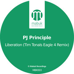 Liberation (Tim Tonals Eagle 4 Remix)