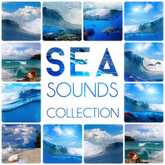 Sea Sounds Collection – Nature Sounds, Calmness, Water, Feel Good, Easy Listening, Crystal World, Waves, Spa Music