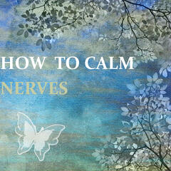 How to Calm Nerves – Tranquility with Classical Music, Stress Relief, Freedom with Classics, Harmony Senses, Anti Stress Music for Inner Peace, Take a Rest
