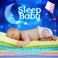 Sleep Baby: Soothing Schubert Music for Goodnight - Classical Music for Babies, Bed Time Songs to Help Your Baby Sleep, Best Sleep Music Therapy, Baby Lullabies, Calming Music for Sweet Dreams, Harp Music for Kids & Children