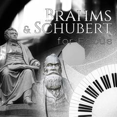 Brahms & Schubert for Focus – Study Music Collection, Exam Study Music, Concentration and Mind Power, Relaxing Piano, Music to Increase Brain Power, Effective Learning