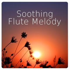 Soothing Flute Melody – Healing Ocean Sound, Native American Flute, Relaxing Sounds of Nature Perfect for Massage, Yoga & SPA, Relax and Feel Inner Power