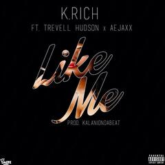 Like Me (feat. Trevell Hudson & Aejaxx) - Single