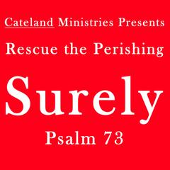Surely: Psalm 73 (feat. John Cate) - Single