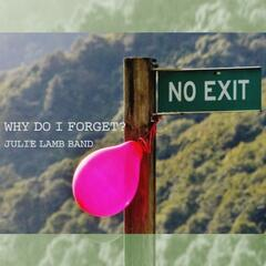 Why Do I Forget? - Single