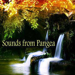 Sounds from Pangea