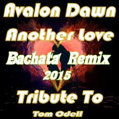 Another Love (Bachata Remix 2015)