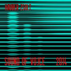 Sound Of Voice 2014