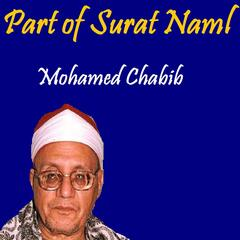 Part of Surat Naml