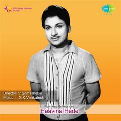 Haavina Hede