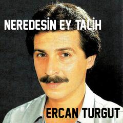 Neredesin Ey Talih