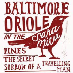 Baltimore Oriole