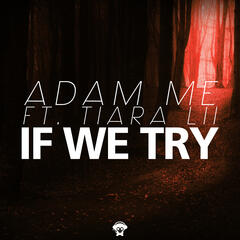 If We Try
