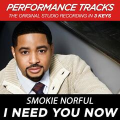 I Need You Now (Performance Tracks) - EP