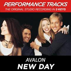New Day (Performance Tracks) - EP