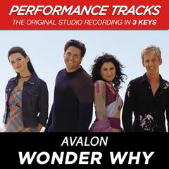 Wonder Why (Performance Tracks) - EP