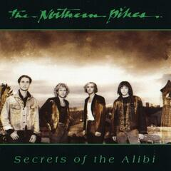 Secrets of The Alibi