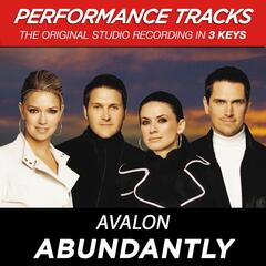 Abundantly (Performance Tracks) - EP