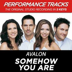 Somehow You Are (Performance Tracks) - EP