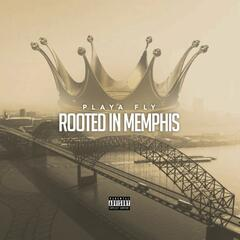 Rooted In Memphis