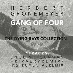 The Dying Rays (feat. Herbert Gronemeyer)