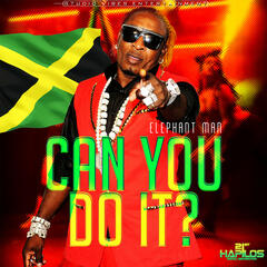 Can You  Do It - Single