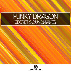 Secret Soundwaves - Single