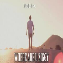 Where Are U Ziggy - Single