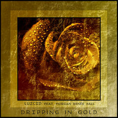 Dripping in Gold (feat. Morgan Renée Hall) - Single