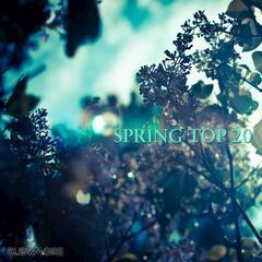 Spring Top 20