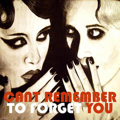 Cant Remember to Forget You