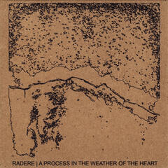 A Process in the Weather of the Heart