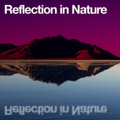 Reflection in Nature