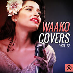 Waako Covers, Vol. 17