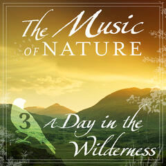 The Music of Nature - A Day in the Wilderness, Vol. 3