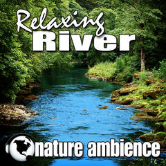 Relaxing River (Nature Sounds)