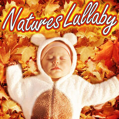 Nature's Lullaby (Help Your Baby Sleep)