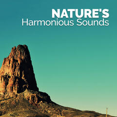 Nature's Harmonious Sounds