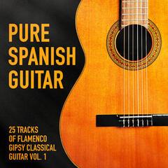 Pure Spanish Guitar, Vol. 1 (25 Tracks of Flamenco Gipsy Classical Guitar)