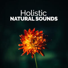 Holistic Natural Sounds