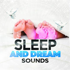 Sleep and Dream Sounds