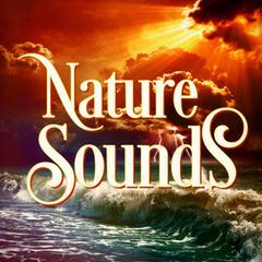 Beautiful Nature Music and Sounds