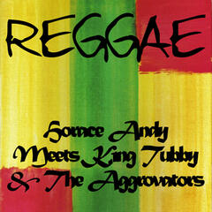 Horace Andy Meets King Tubby and the Aggrovators