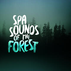 Spa Sounds of the Forest