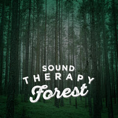 Sound Therapy: Forest