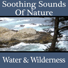 Soothing Sounds of Nature - Water & Wilderness